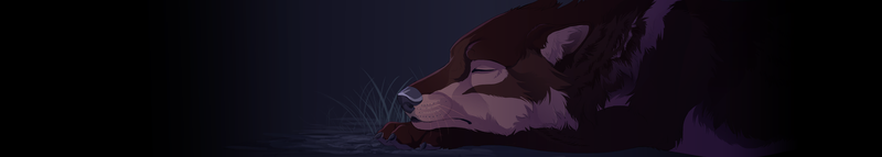 Sleeping fade out by DawnFrost