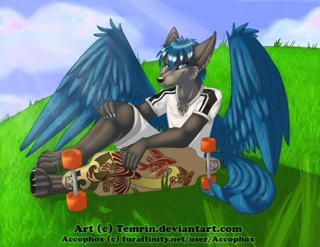 Commission - Accophox by Temrin