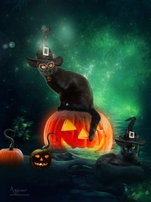 Haloween Cats by annemaria48
