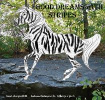 Good Dreams With Stripes by wsl30horselover10