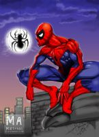 spiderman by martenas