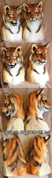 Tigers x2 by Magpieb0nes