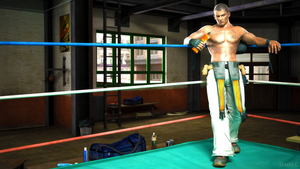 Dead or Alive 5 - Rig by James--C