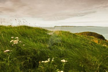 Carrick-a-Rede by photopixie