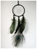 A Little Peacock - dream catcher 2 by SaQe