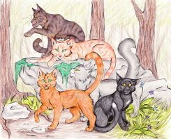 Into the Wild by CaptainMorwen