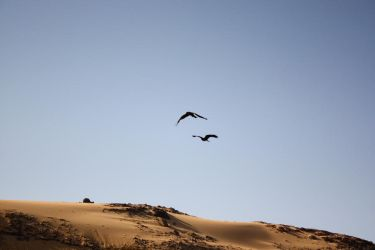 Flying moments by Khodeir