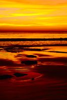 Sunset sand - Cable Beach by wildplaces