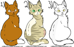 Warrior Cat Adoptables (1/3 OPEN) by Greyriver0