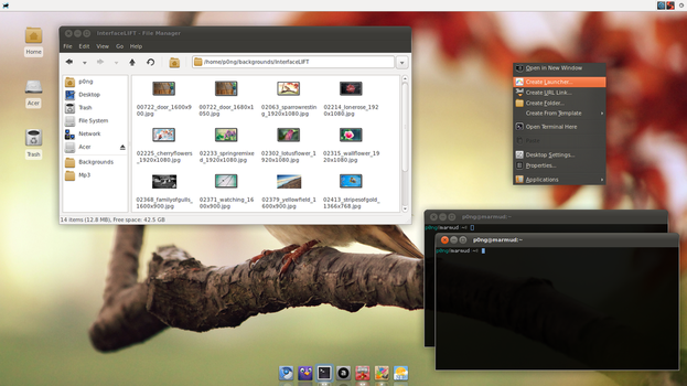 Ambiance for XFCE by p0ngbr