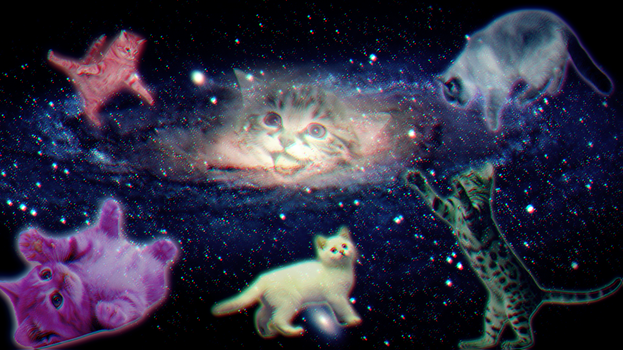 Galaxy Cats by Fiuji-Nation