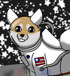 First Doge on The Moon by EliteUnicorns