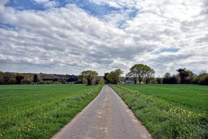 7852 Road to the cloudy horizon by RealMantis