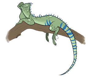 Character Design - Iguana by shayfifearts