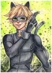 claws out (miraculous ladybug) by pencil-butter