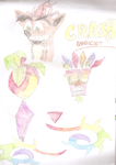 Crash Bandicoot Doodles by HedgeCatDragonix