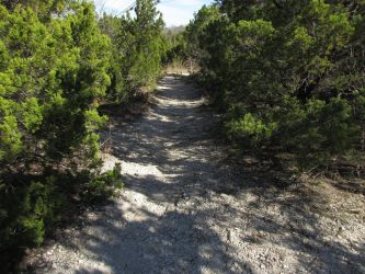The Trail by HerrEsel