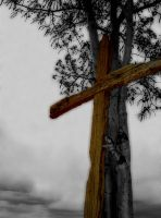 Cross and Tree by NAUX