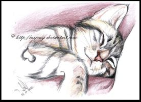 Sleepy kitty by MEJ0NY