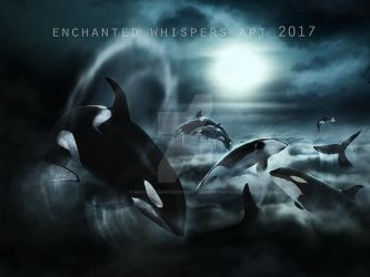 Orcas by EnchantedWhispersArt