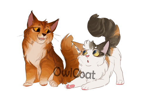 Warrior cat kit adoptables [CLOSED] by OwlCoat