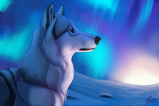 Winter Colors by InstantCoyote