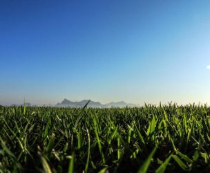 grass and sky by RoseCS