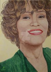 Whitney  Houston.... Colored ballpoint pens. by valakh