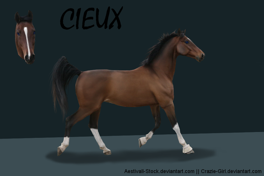 Character Ref: Cieux by Crazie-Girl