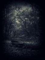 The Dawn That Never Shone VII by AnujKorrupted