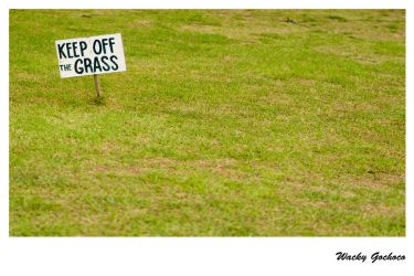 Keep Off the Grass by searchinner