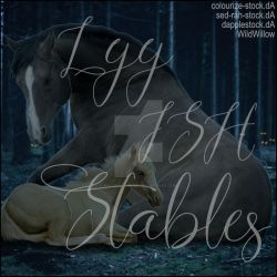 HEE Stable Avatar - Lyy ISH Stables by WildWillowHEE
