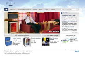 Emsindo (ems Group of Companies) Web Redevelopment by astayoga