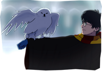 Harry Potter: White by wasting-air