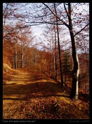 And the road goes ever on... by Zair-Ugru-nad