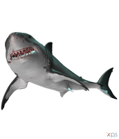 The Depth - Great White Shark by MrUncleBingo