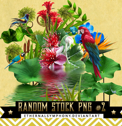 RandomStock PNG Pack #2 by EthernalSymphony