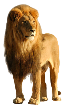 unrestricted hq lion 2 by aio350
