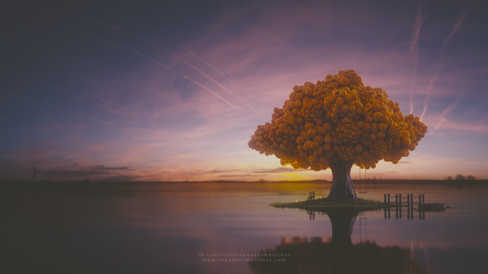 Tree of Life by reynante