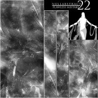NuLLabstract22 'Flawless M.' by AlphaNull