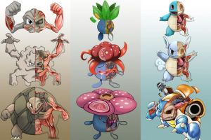 Pokemon banner down by Christopher-Stoll