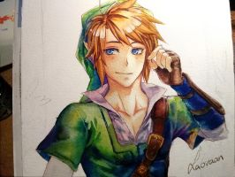 Sunny Link - WIP by Laovaan