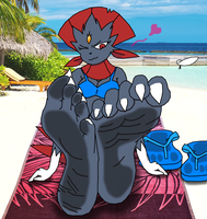Beached Weavile (Paw Day 2016) by RaidenTheDeoxys