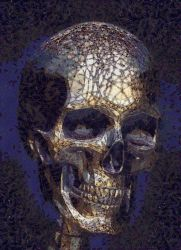 ~SKULL 4~ by SalvidorMonkey