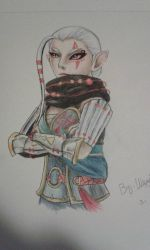 Hyrule Warriors - Impa by HylianHaru