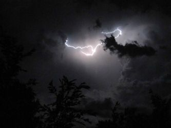 lightning by animallover1430