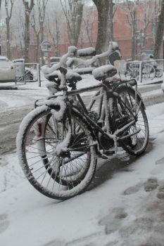 Snow bicycles by Breizhell
