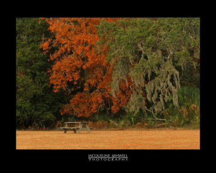 Thoughts of an Autumn Picnic by Isquiesque