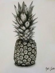 Pineapple by CARTOONFANATIC3