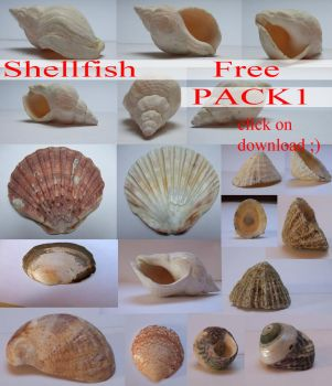ShellFish Pack 1 by whynotastock